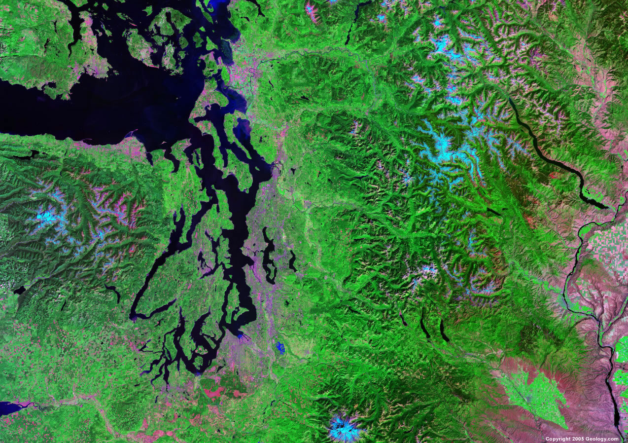 seattle-satellite-image.jpg