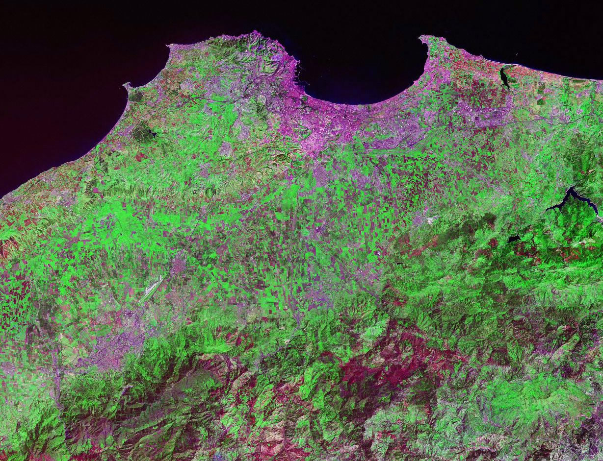Algiers Algeria satellite image map