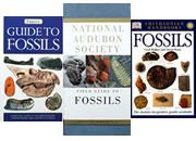 Fossil Books
