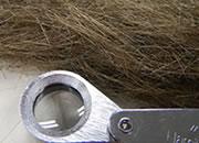 Pele*s Hair
