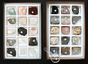Rock, Mineral and Fossil Collections