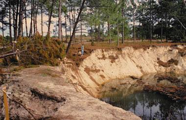 Florida subsidence