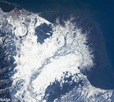 snow cover on the Selenga River delta