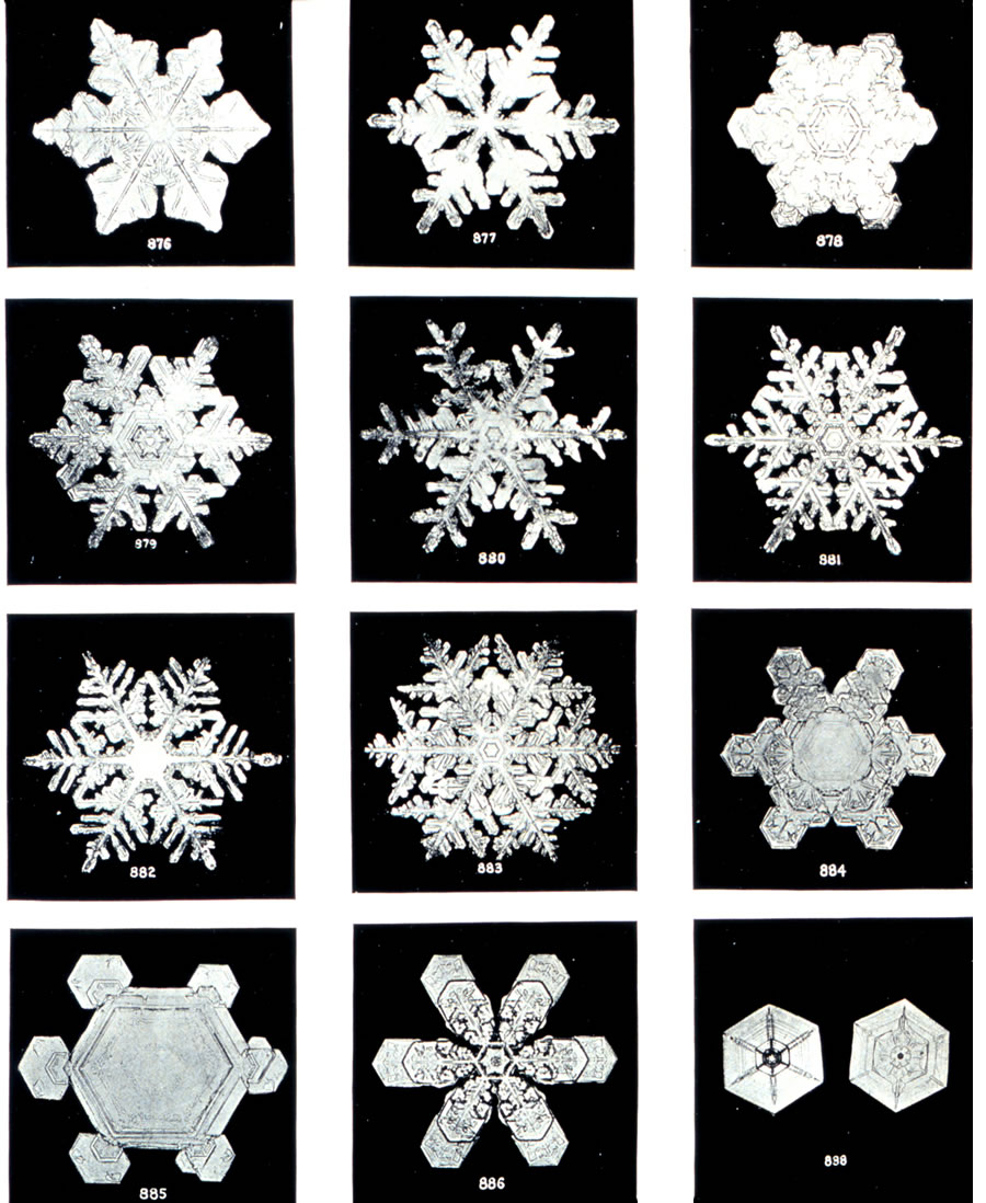 How Do Snowflakes Form? -- Why is Every Snowflake Different?