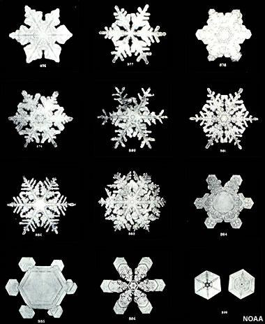 snowflakes - unique shape