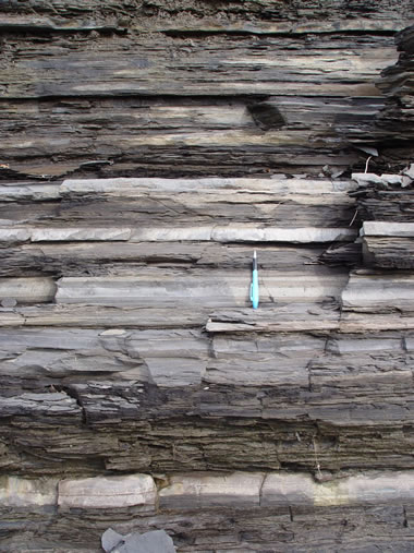 photograph of the Utica Shale in outcrop