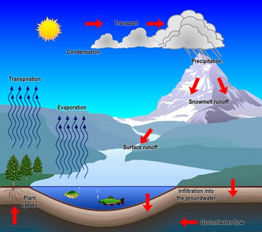articles with hydrological cycle