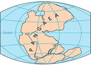 Pangaea Maps