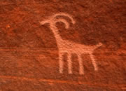 Rock art - petroglyphs