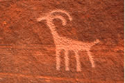 Petroglyphs and Pictographs