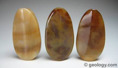 Petrified wood agate