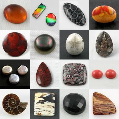 Organic Gemstones: Amber, pearl, jet, dinosaur bone and more!