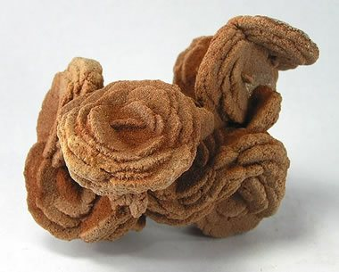 barite rose photograph by Rob Lavinsky