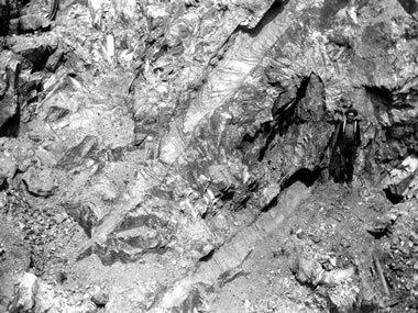 Giant spodumene crystals - Etta Mines