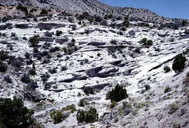 Topaz Mountain Rhyolite