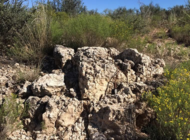 caliche outcrop
