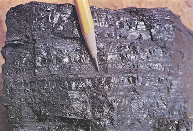 Coal: Anthracite, Bituminous, Coke, Pictures, Formation, Uses