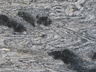 photo of polished gneiss from the yard of a countertop vendor