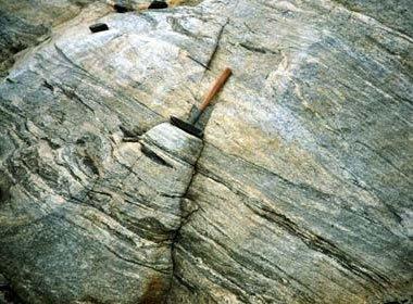 Gneissic Granodiorite