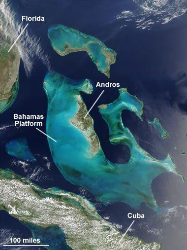 The Bahamas Platform, a limestone-forming environment