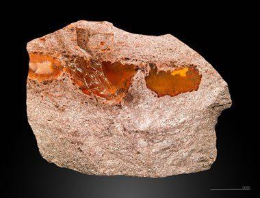 Fire Opal in Rhyolite