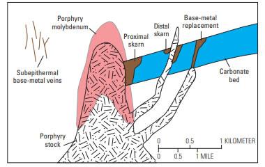 skarn in carbonates
