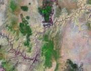 Arizona Satellite Image