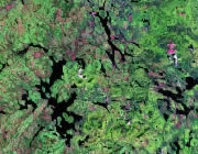 Maine Satellite Image
