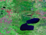 Minnesota Satellite Image