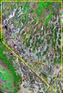 Nevada satellite image