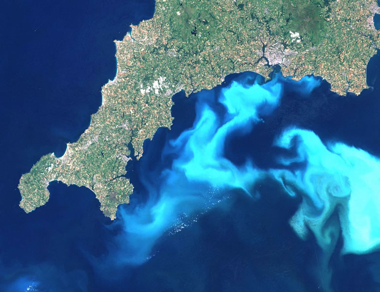 phytoplankton bloom in the English Channel off the southern tip of England