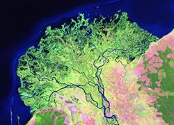 Selenga Delta Satellite Image