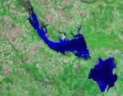 South Carolina Satellite Image