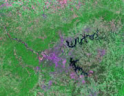Tennessee Satellite Image