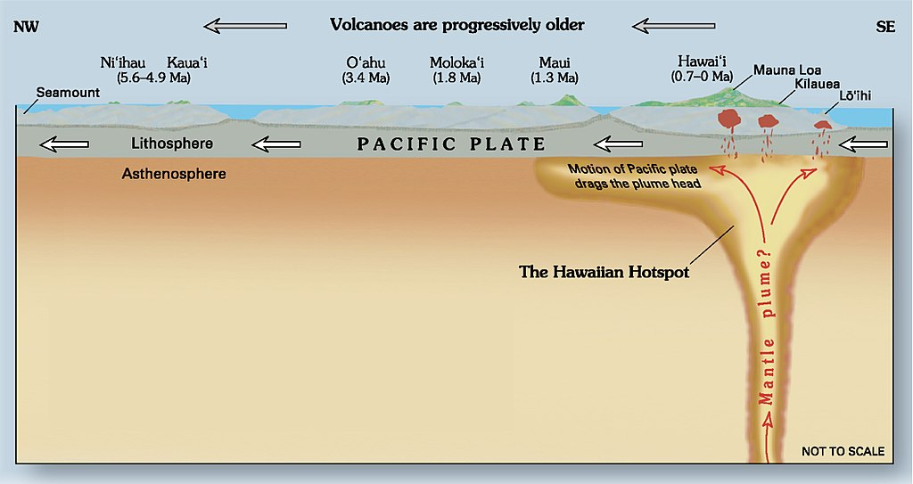 Plate Tectonics and the Hawaiian Hot Spot